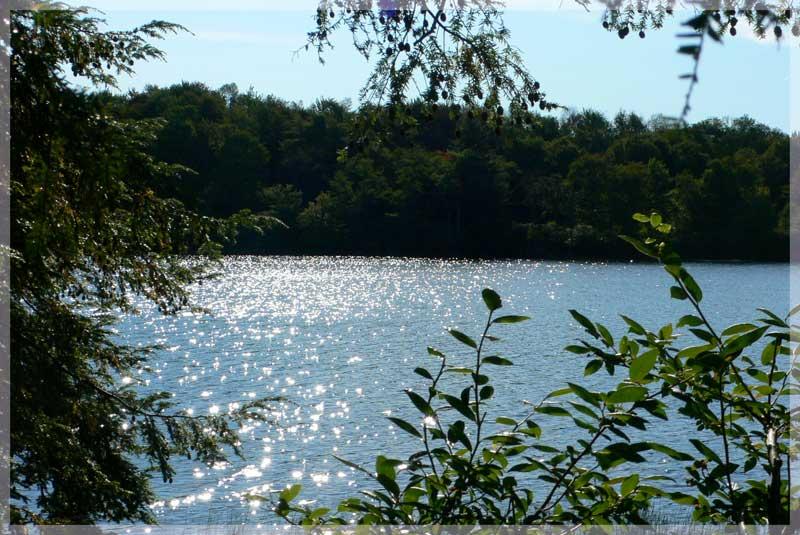 shimmering-lake