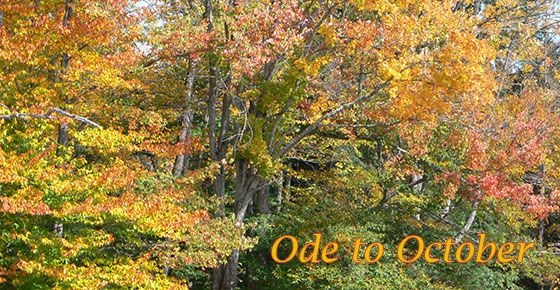 Ode-to-October-feature